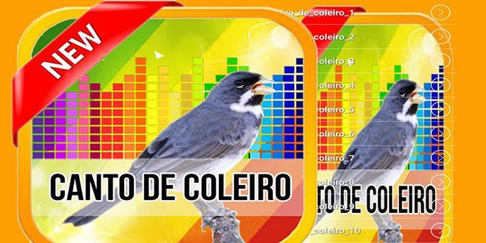 Canto De Coleiro TuiTui 2017 screenshot 1