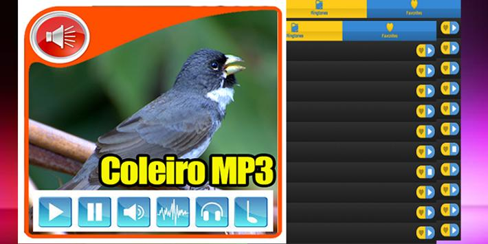 Canto De Coleiro Tui Tui Mini apk screenshot