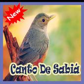 Cantos De Sabia Mp3 icon