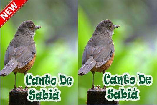 Cantos De Sabia Mp3 screenshot 4