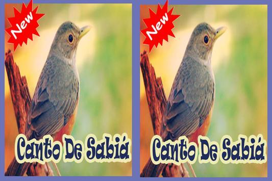 Cantos De Sabia Mp3 screenshot 1