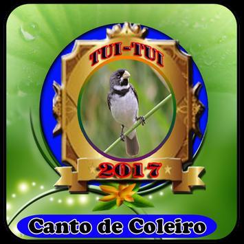 Canto de ColeiroCantos De Brasileiros 100% Offline poster