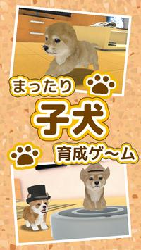 子犬のかわいい育成ゲーム - 完全無料の可愛い犬育成アプリ poster