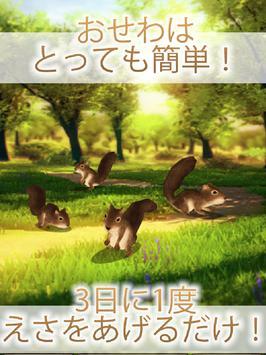 かわいいリス育成ゲーム - 完全無料!癒しのりす育成アプリ screenshot 4