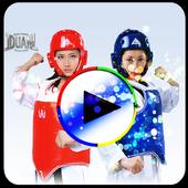 Taekwondo Videos icon