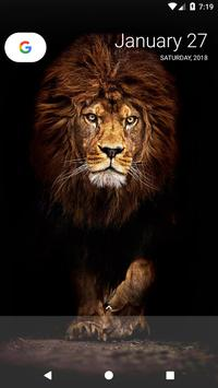 Lion Wallpapers poster