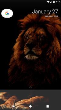 Lion Wallpapers screenshot 12