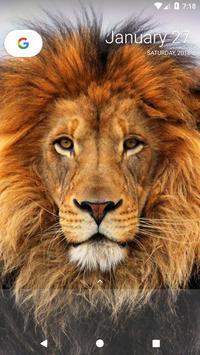 Lion Wallpapers screenshot 17