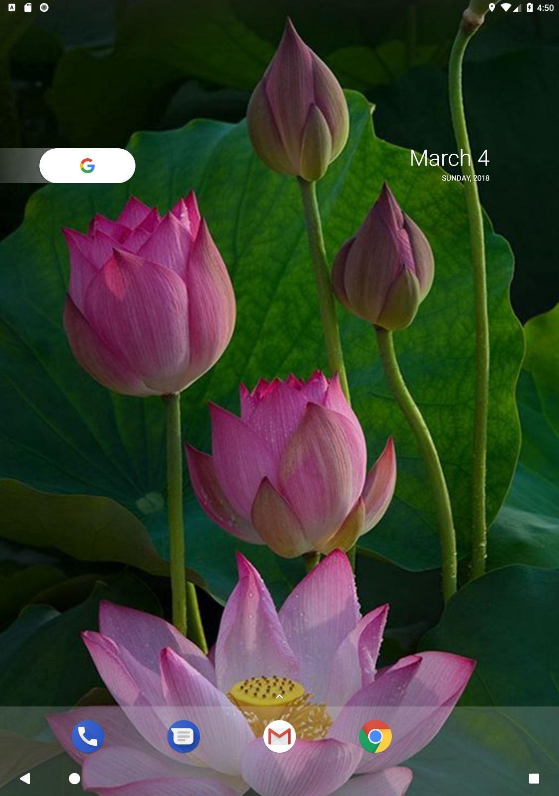 Lotus Wallpaper For Android Apk Download Images, Photos, Reviews