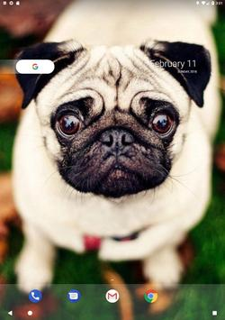 Pug Wallpaper screenshot 10