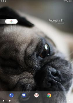 Pug Wallpaper screenshot 12
