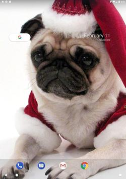 Pug Wallpaper screenshot 13