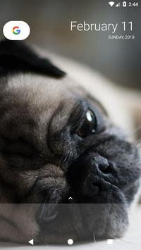 Pug Wallpaper screenshot 2