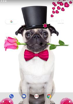 Pug Wallpaper screenshot 9