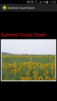 summer countdown poster
