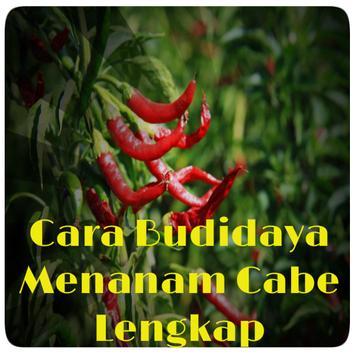 Cara Budidaya Menanam Cabe poster