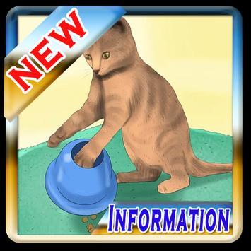 Cara Merawat Kucing Terbaru poster