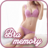 Bra Memory Card icon