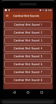 Cardinal Bird Sounds poster