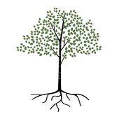 Birchwood Connect icon