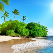 caribbean wallpapers icon
