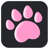 고양이 장난감(고양이를 위한 놀이) icon