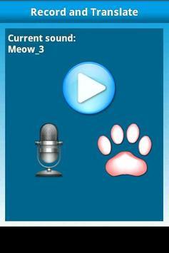 Cat Translator poster
