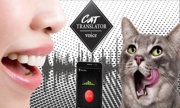 Translator For Cat Talking poster