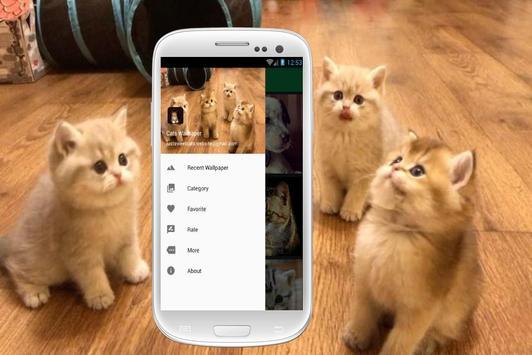 Cat Wallpapers screenshot 4