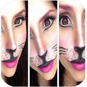Cat Makeup Tutorial icon