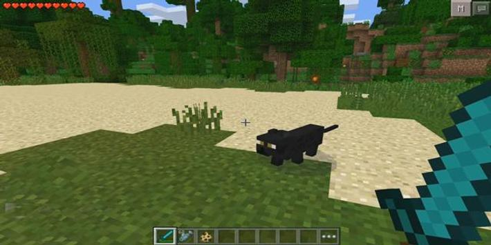 Cat Mod for Minecraft PE screenshot 1