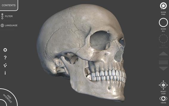 Anatomia 3D para artistas imagem de tela 10