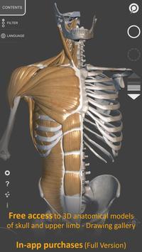 Anatomia 3D para artistas imagem de tela 1