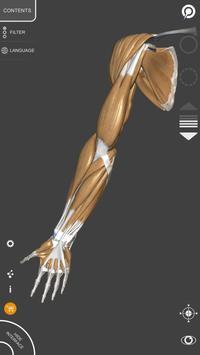 Anatomia 3D para artistas imagem de tela 2