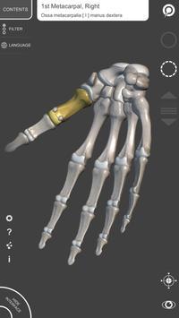 Anatomia 3D para artistas imagem de tela 3
