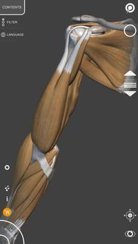 Anatomia 3D para artistas imagem de tela 4