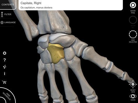 Skeleton 3d Anatomy Apk Download Free Medical App For Android