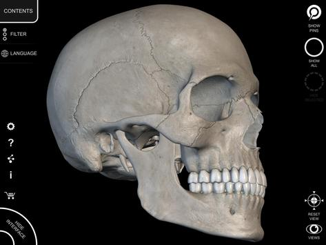 Skeleton 3d Anatomy Apk Download Free Medical App For Android
