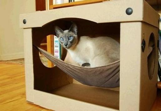 The Latest Cat House Designs screenshot 3