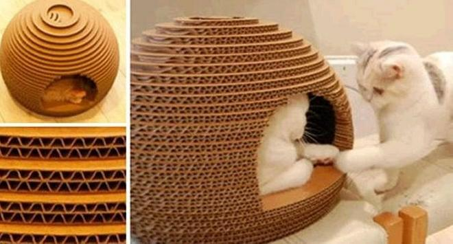 The Latest Cat House Designs poster