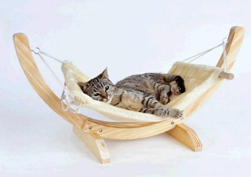 The Latest Cat House Designs screenshot 6