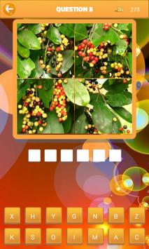 Guess the Fruit World screenshot 1