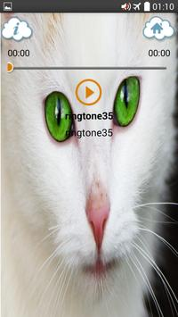 Best Cat Ringtones apk screenshot