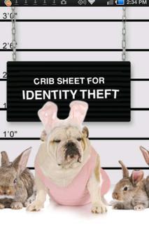 Otterbein Crib Sheet apk screenshot