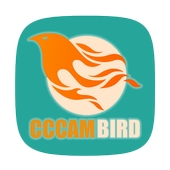 CCcamBird icon