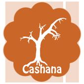 Cashana icon