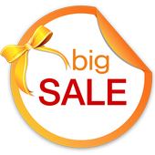 Big Sale In China icon