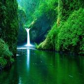 İlginç Doğa Fotoğrafları icon