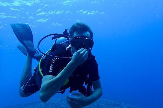 Scuba Diving Live Wallpapers apk screenshot