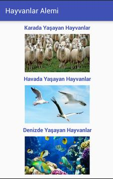 Hayvanlar Alemi poster